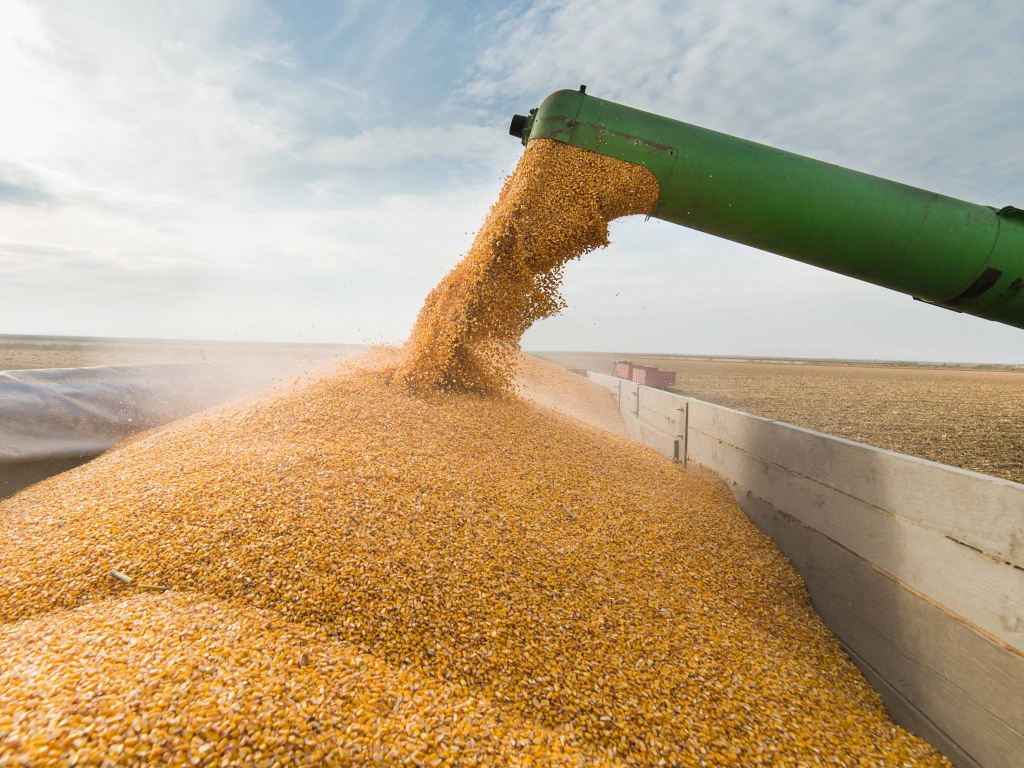 Trade war impacts on Asian agricultural commodity trading