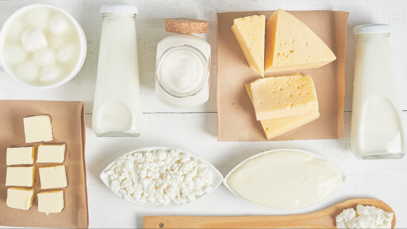 The Rise of Dairy Alternatives in Plant-Based Proteins